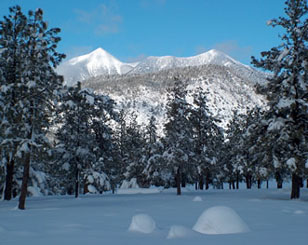 San Francisco Peaks in Flagstaff, AZ